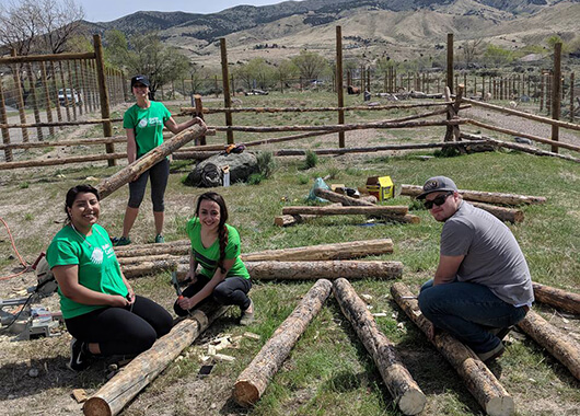 ICCU Team Members Volunteering Making Fences at the Zoo
